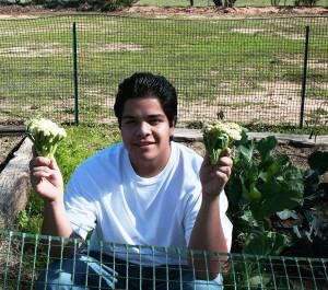 horticulture club1