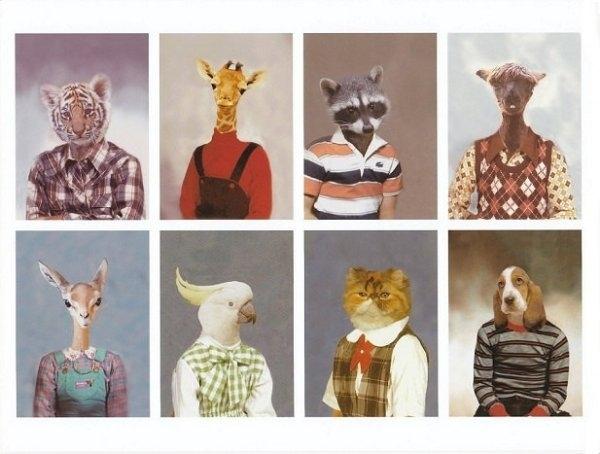 animalschool pics